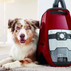 Blizzard CX1 Cat Dog Canister Vacuum