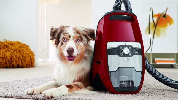 Blizzard CX1 Cat Dog Canister Vacuum