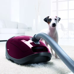 Miele Complete C3 Cat & Dog portable vacuum